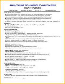 Resume Exles For Skills Summary 9 Summary In Resume Bursary Cover Letter