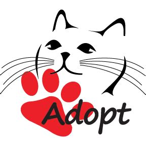 where to adopt a near me adopt me cat rescue adoptmecat