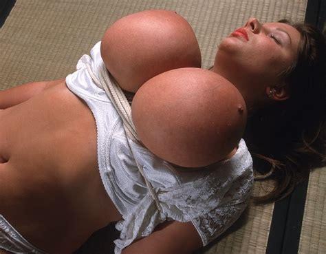 Lazy Pig Nadine Jansen Bondage Corset