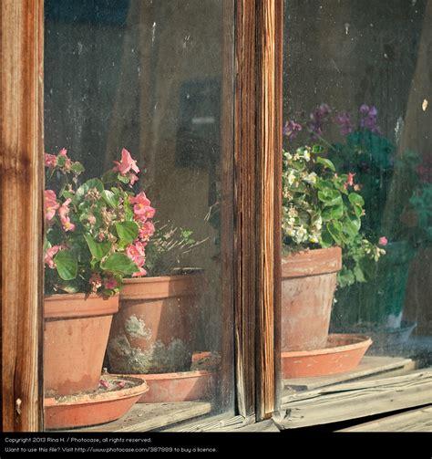 Fensterbrett Zum Einhängen by Fensterstill Rina H Ein Lizenzfreies Stock Foto Zum