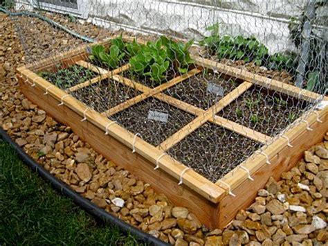 come fare un orto in giardino come creare un orto nel proprio giardino