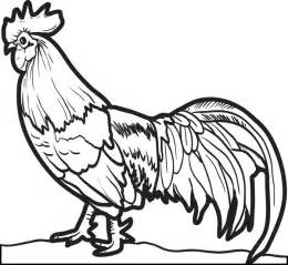 chicken coloring pages free printable realistic chicken coloring page for