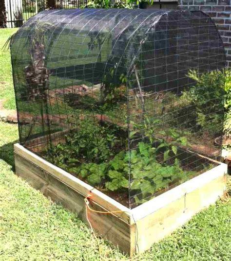 Vegetable Garden Box Kits Exhort Me Vegetable Garden Box Kits