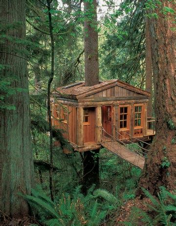 real treehouse tree house pictures amazing treehouses