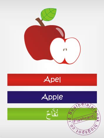 belajar mengenal buah buahan  bahasa inggris