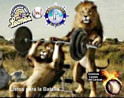 imagenes del magallanes vs leones cronicasleones hoy comienza una nueva batalla leones del