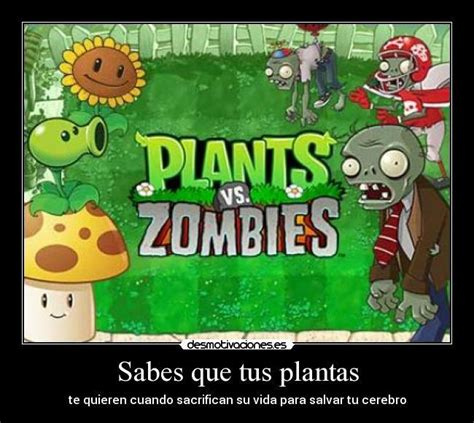 imagenes de memes zombies memes de plantas vs zombies para reir un rato im 225 genes