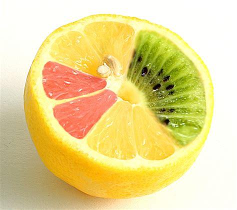 alimenti ogm alimentos 233 ticamente modificados o transg 233 nicos ogm