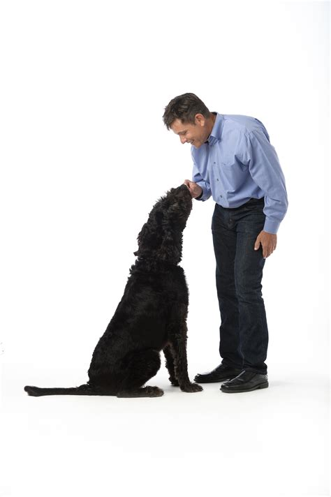 Christopher Carpenter Dvm Mba by Calling All Tween Future Veterinarians And Their Parents