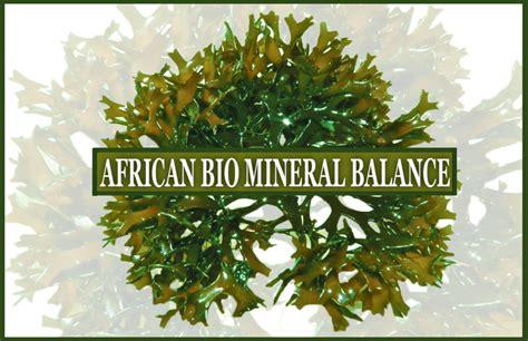 Biomineral Balance Detox by Bio Mineral Balance Detox A Healthy Crush