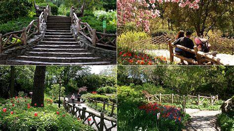 Shakespeare Garden Central Park by Newsiesweek Andy Richardson Gives Fans A Glimpse Into