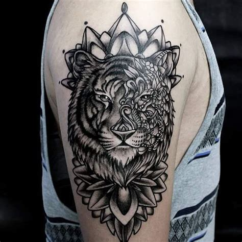 tiger and lion tattoo designs 25 best ideas about tiger on white