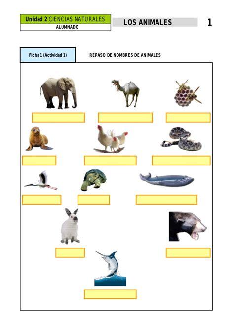 cadenas troficas interactivas actividad 2 animales