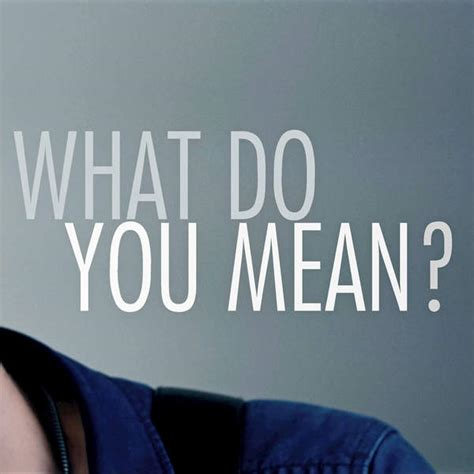 what do you do radio remix what do you mean originally performed by justin bieber instrumental version