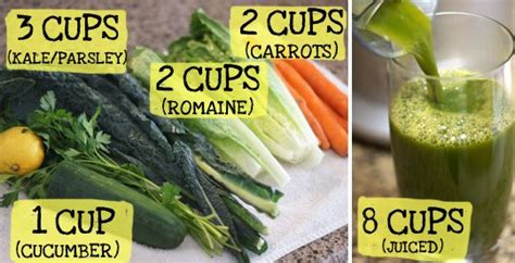 9 cups vegetables mitochondria diet 9 cups of vegetable by dr terry wahls
