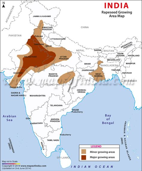 India Rapeseed/Mustard growing areas map, Indian agriculture maps