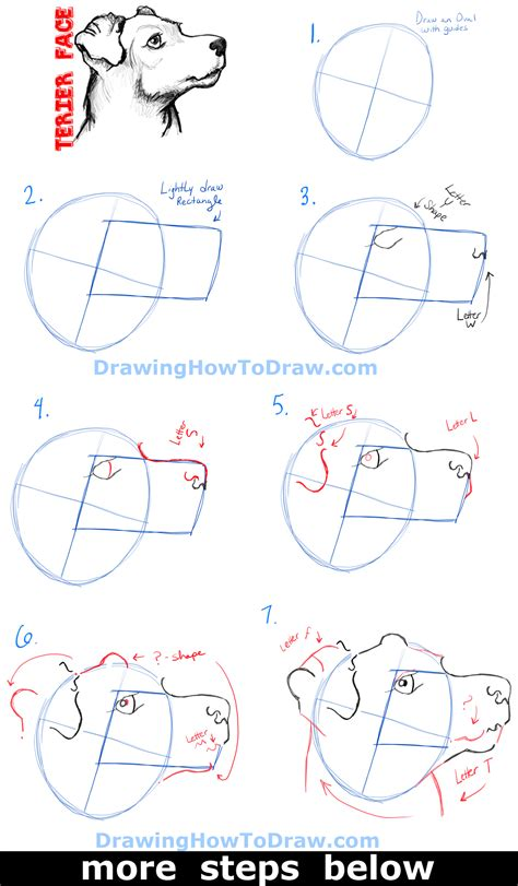 how to do doodle step by step how to draw a terrier s s with easy steps