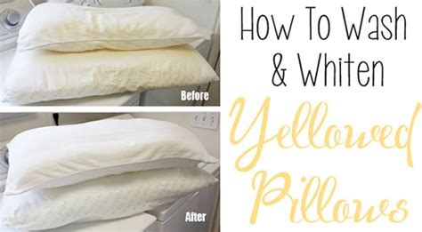 How To Get Yellow Stains Out Of Pillows by How To Wash Whiten Yellowed Pillows Home And Gardening Ideas