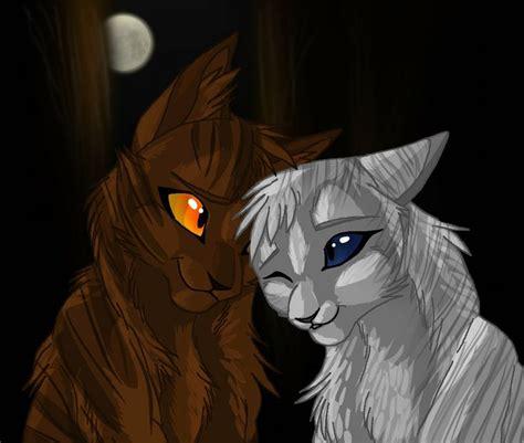 Cat In An X ivypool an hawkfrost warrior cats warriors cats