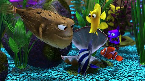 Www Finding Puffer Fish Finding Nemo Www Pixshark Images Galleries With A Bite