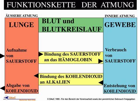 und innere atmung deutscher aero club e v unterrichtsfolien