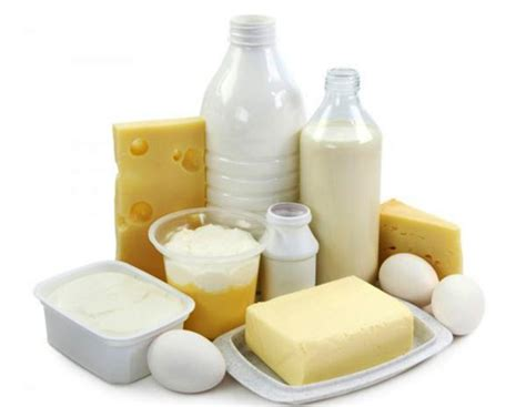 The Best Diet Milk And Cheese Department by High Protein Dairy Diet May Cut Ab Study Ny Daily News