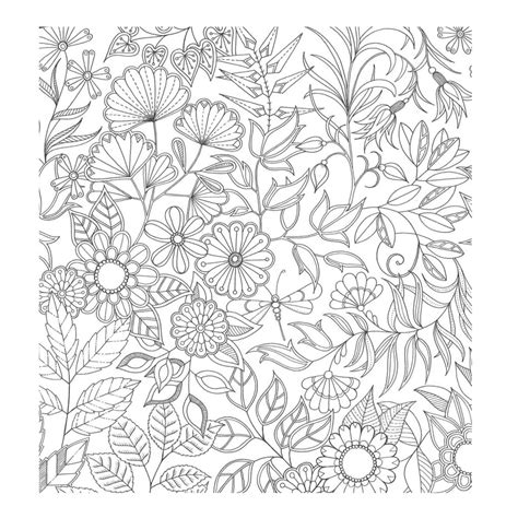sobriety garden coloring book 2 an coloring book with 36 gorgeous designs centered around recovery with illustrated slogans sayings and all 12 steps from alcoholics anonymous books colorir jardim secreto colorir jardim secreto