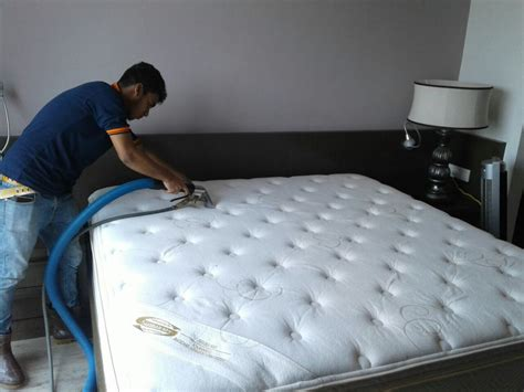 futon cleaning mattress dust mites removal cleaning kleen carpet