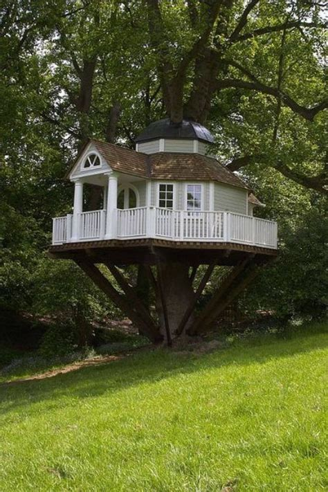 really cool tree houses thats a really cool tree house my future house it s