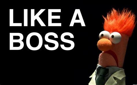 Like A Boss Meme - like a boss meme wallpapers best like a boss meme images