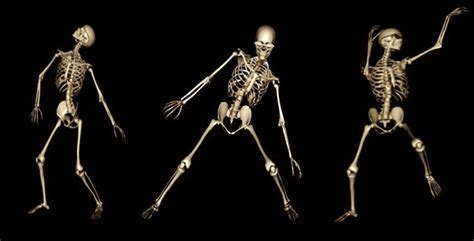 skeleton funny dance motion graphics videohive