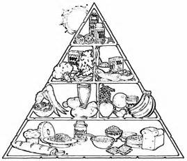 food pyramid coloring page food chain coloring pages coloring home
