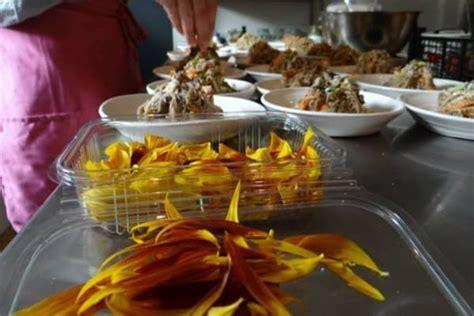 Bibit Bunga Edible 11 daftar edible flowers bunga yang bisa dimakan bibit