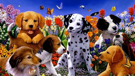 puppy puppy beautiful wallpaper puppy dogs pets and docile