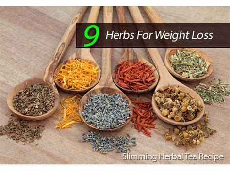 Herbs Detox Weight Loss by Best 25 Herbal Weight Loss Ideas On Herbal