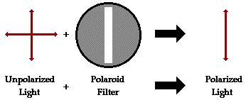 scattering of light definition polarization