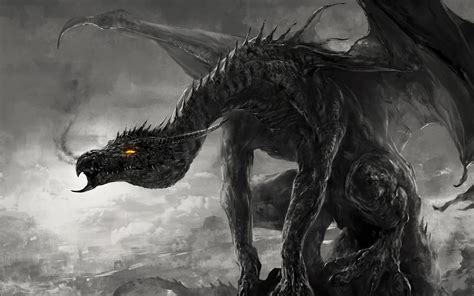 black and white dragon wallpaper black and white dragon wallpaper wallpapersafari
