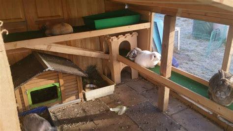 kaninchengehege innen etagen kaninchengehege kaninchenwiese