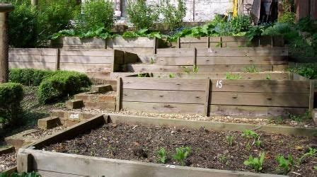 17 Images About Terrace Vegetable Garden On Pinterest Terraced Vegetable Garden