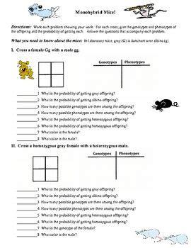 Mouse Worksheet Answers by Monohybrid Mice Monohybrid Genetics Problems Science
