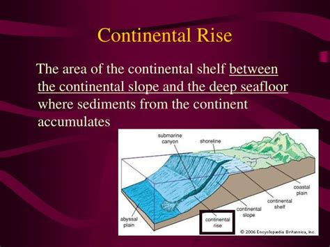 Continental Shelf Slope And Rise by Ppt Seafloor Features Powerpoint Presentation Id 1485506