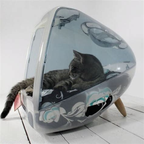 cool cat beds 17 best images about cat repurposings furniture redos on