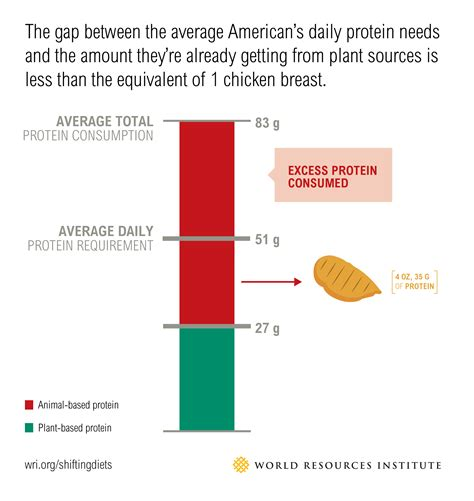 protein on rest days sustainable diets what you need to in 12 charts