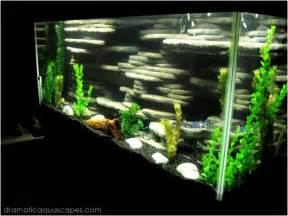 Dramatic AquaScapes   DIY Aquarium Background   Chad Fromme in the