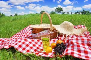 your eco friendly picnic