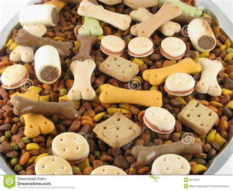 Food Animal animal food stock photos image 6579313