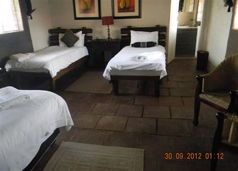 rooms and rest family room lions rest