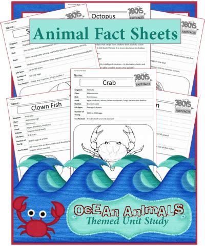 printable animal fun facts free ocean animal fact sheet printables science for
