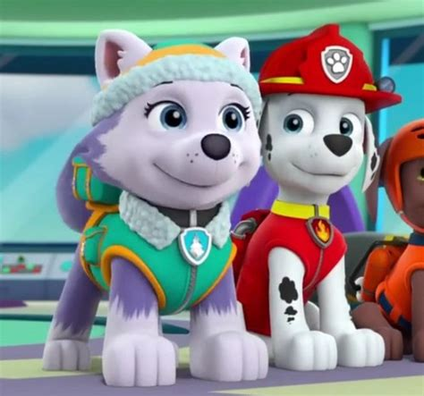 paw patrol everest paw patrol everest www imgkid com the image kid has it