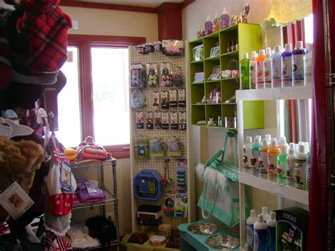 puppy boutique ny pet boutique from country pet and farm supply in lacona ny 13083